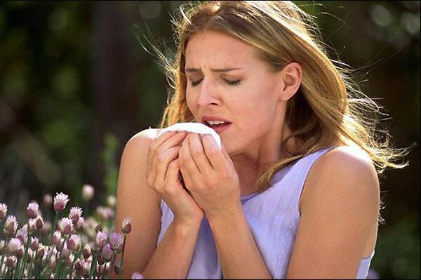 Зуд в носу и частое чихание - признаки развития аллергического ринита