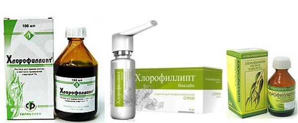 Хлорофиллипт для лечения стафилококка у детей
