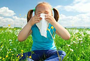 Одна из разновидностей насморка - аллергический насморк